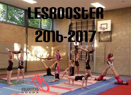 2016 lesrooster S