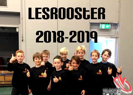 2018-2019 lesrooster S