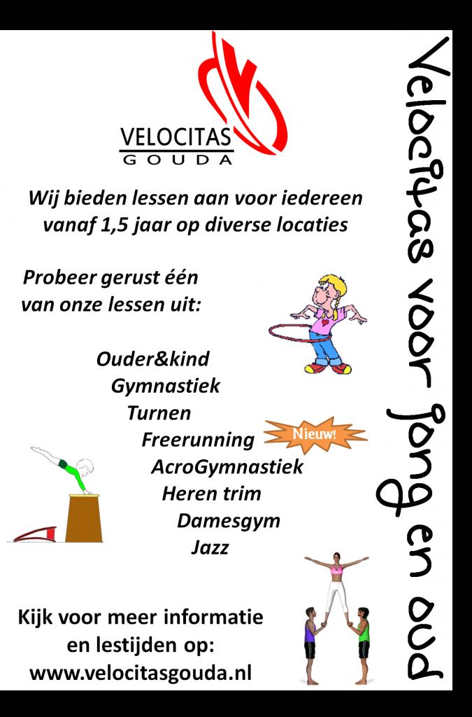 201303 flyer Velocitas