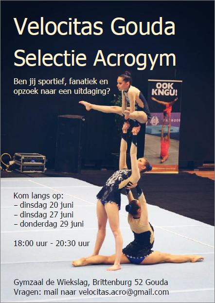 2017 acrogym poster